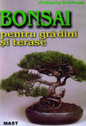 bonsai-pentru-gradini-si-terase