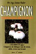 champignon-tehnologia-de-cultura