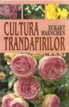 cultura-trandafirilor