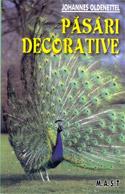 pasari-decorative