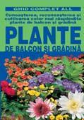 plante-de-balcon-si-gradina-ghid-complet-all