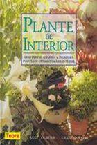 plante-de-interior-ghid-pentru-alegerea-si-ingrijirea-plantelor-de-interior