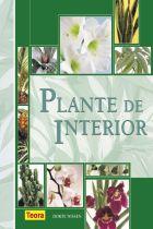 plante-de-interior-nissen