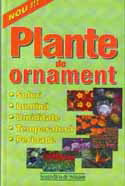 plante-de-ornament