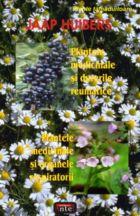 plantele-medicinale-si-durerile-reumatice-plantele-medicinale-si-organele-respiratorii