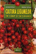 cultura-legumelor-in-camp-si-in-solarii