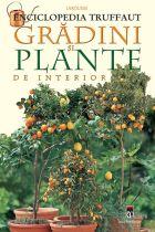 gradini-si-plante-de-interior-enciclopedia-truffaut