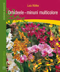 orhideele-minuni-multicolore