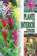 plante-de-interior