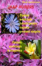 plantele-medicinale-folosite-pentru-reglarea-presiunii-sangelui-plantele-medicinale-si-dragostea