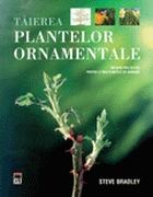 taierea-plantelor-ornamentale
