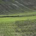 grau-verde-primavara-sol-rezerva-apa