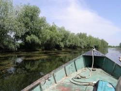 Se modifica legea 317/2009, legea pescuitului