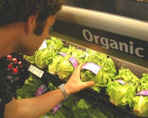 agricultura-ecologica-produse-ecologice