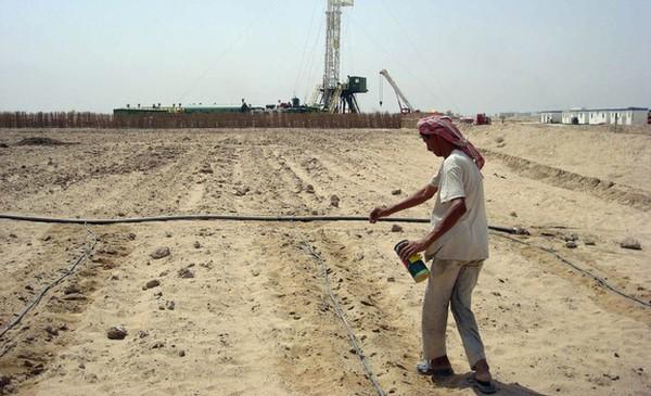 agricultura irak
