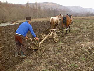 agricultura-subzistenta
