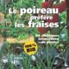 asocieri-legume-gradina-legume