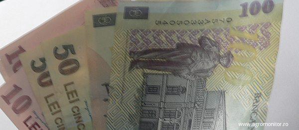 bani-subventii-agricultura-2013