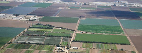 cadastru-registrul-agricol-romania-electronic