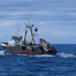 cote-pescuit-2013