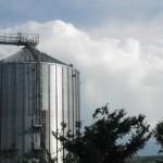 depozitare-semintelor-pentru-consum-cereale