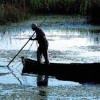 fonduri-pescari-pescuit-delta-dunarii