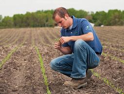 fonduri-tineri-fermieri