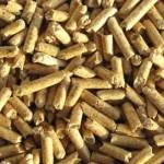 investitii-biomasa-bioenergie
