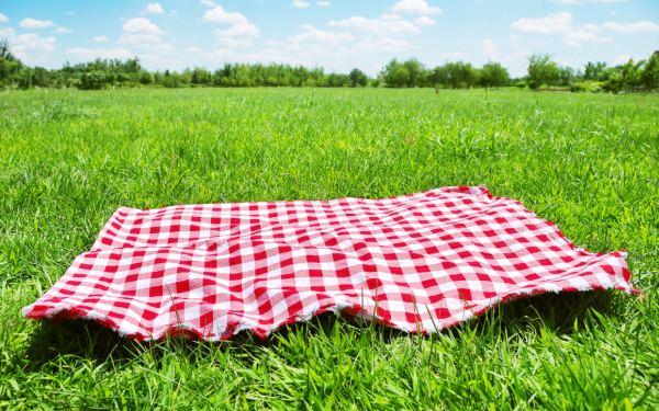 legea-picnicului