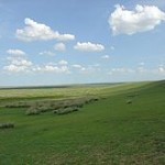 pajiste-circui-agricol-terenuri-agricole