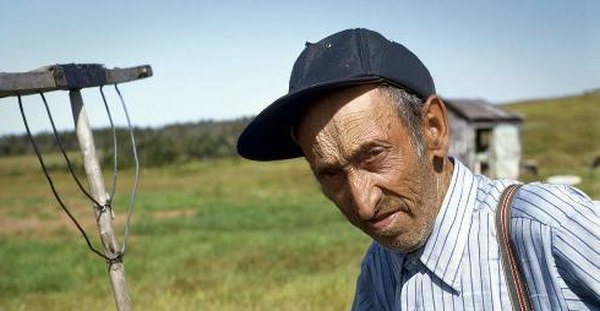 pensii-agricultura-intrebari-pensie-agricultor