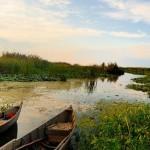 pescuit-delta-dunarii