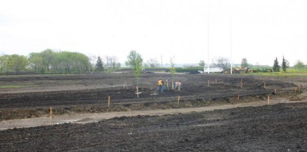 prima-impadurire-a-terenurilor-agricole