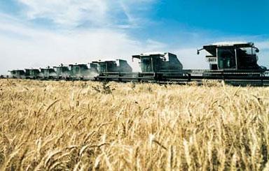 productia-agricola-2013
