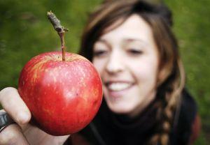 program-fructe-in-scoli-lege-ordonanta-legislatie