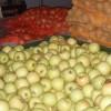 razie-la-depozitele-de-legume-fructe