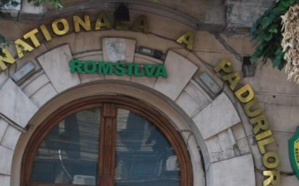 romsilva-buget-2014