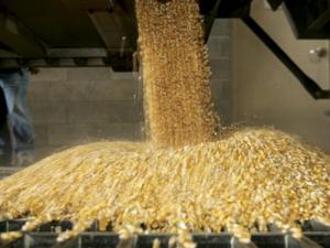 siloz-cereale