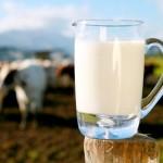 standarde-lapte-crud