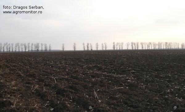 subventia-pe-suprafata-2014-subventii-agricultura