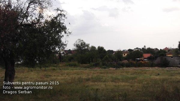 subventii-agricultura-pasuni-subventie-2014-2015