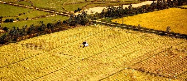 subventii-apia-2014-agricultura-suprafata