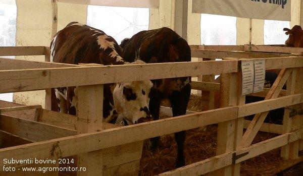 subventii-bovine-2014