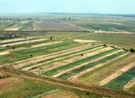terenuri-agricole-retrocedari-neamt