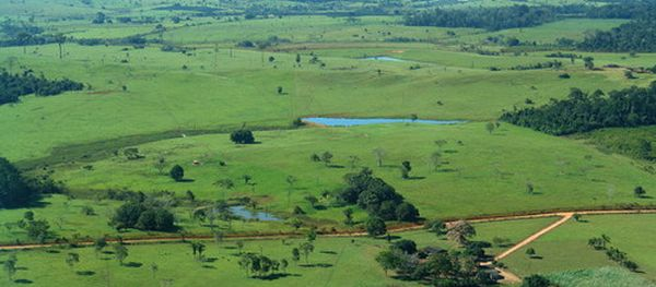terenuri-agricole-vanzare-vand