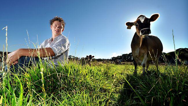 tineri-fermieri-fonduri-bani