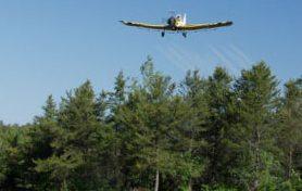 tratament-fitosanitar-avio-omizi-paduri-defoliatoare